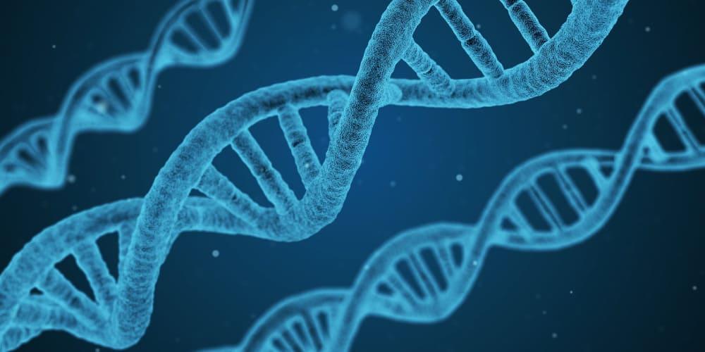 ミセルクリニック 大阪梅田院 切らないワキガ・多汗症治療 ミラドライ ワキガは遺伝