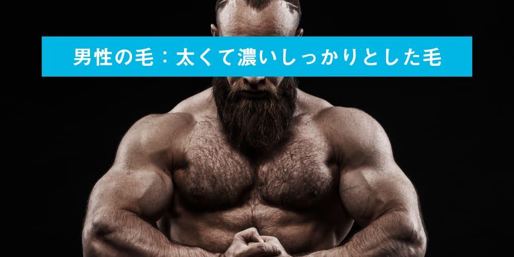 ミセルクリニック 男性の毛:太くて濃いしっかりとした毛